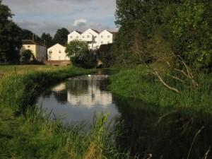 buxton-mill