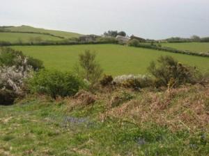 Stonebarrow