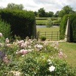 Ardington gardens - where Robyn frequently bumps into Dan!