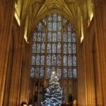 The Christmas tree under the fabulous West Window at Winchester Cathedral.
