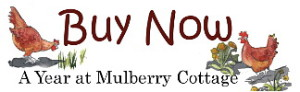 Buy Now A Year at Mulberry Cottage by Victoria Connelly