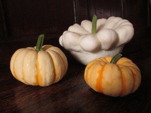 Patty pan and sweet lightning squashes